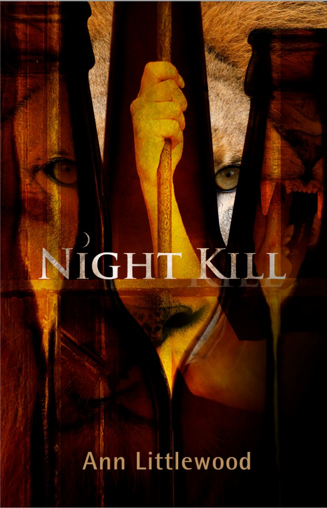 Night Kill Cover